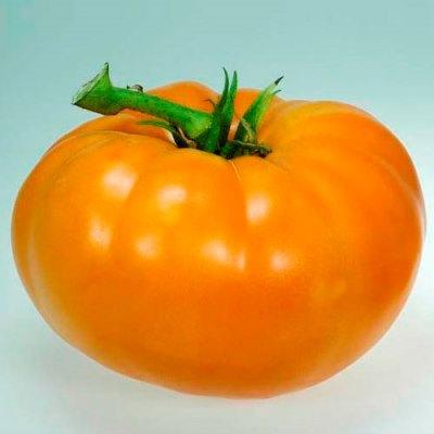 Organic Amana Orange Tomato Seeds - 20 Count