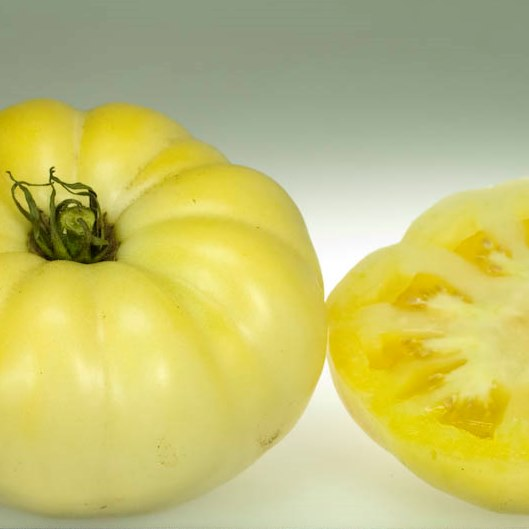 Organic White Queen Beefsteak Tomato Seeds - 20 Count