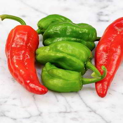 Organic Pimiento de Padron Pepper Seeds - 15 Count