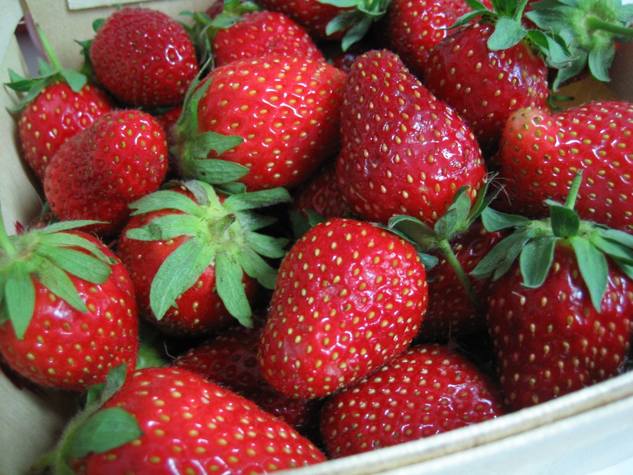Organic Valley Sunset Strawberry Seeds - 25 Count